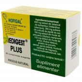 Redigest plus, 40 comprimate, Hofigal